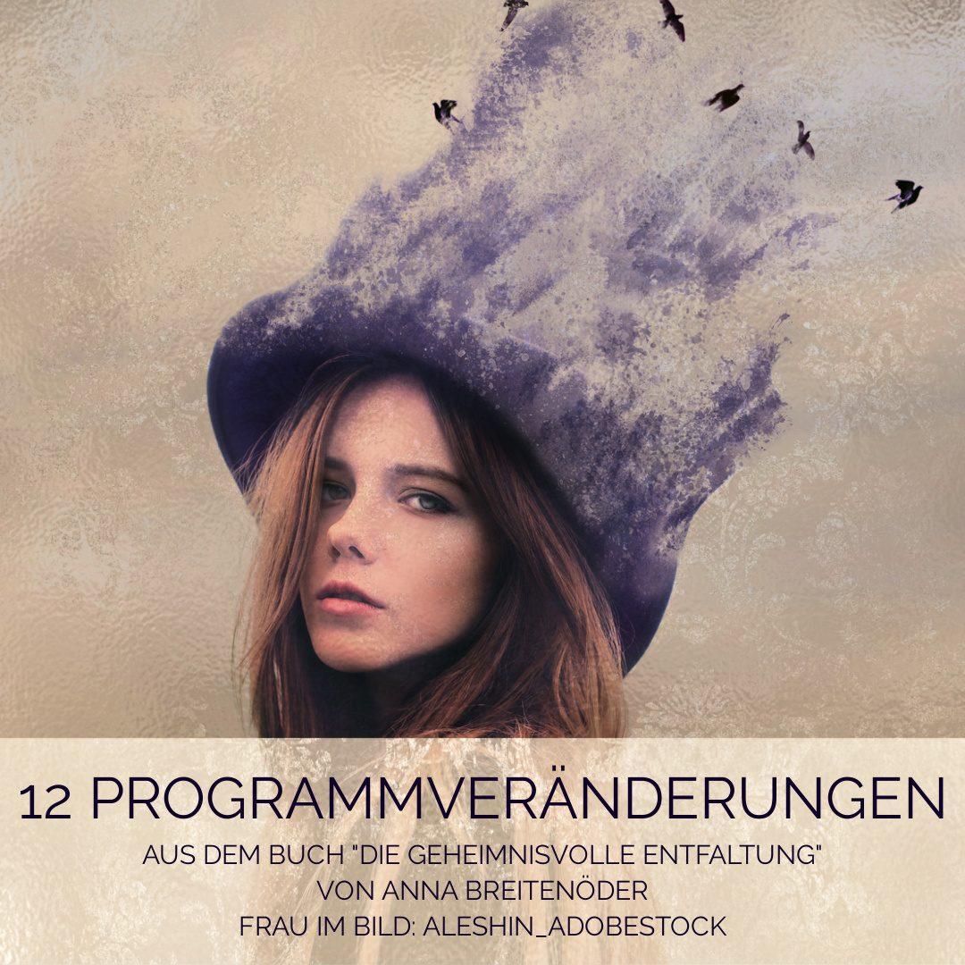 12 Programm Veränderungen