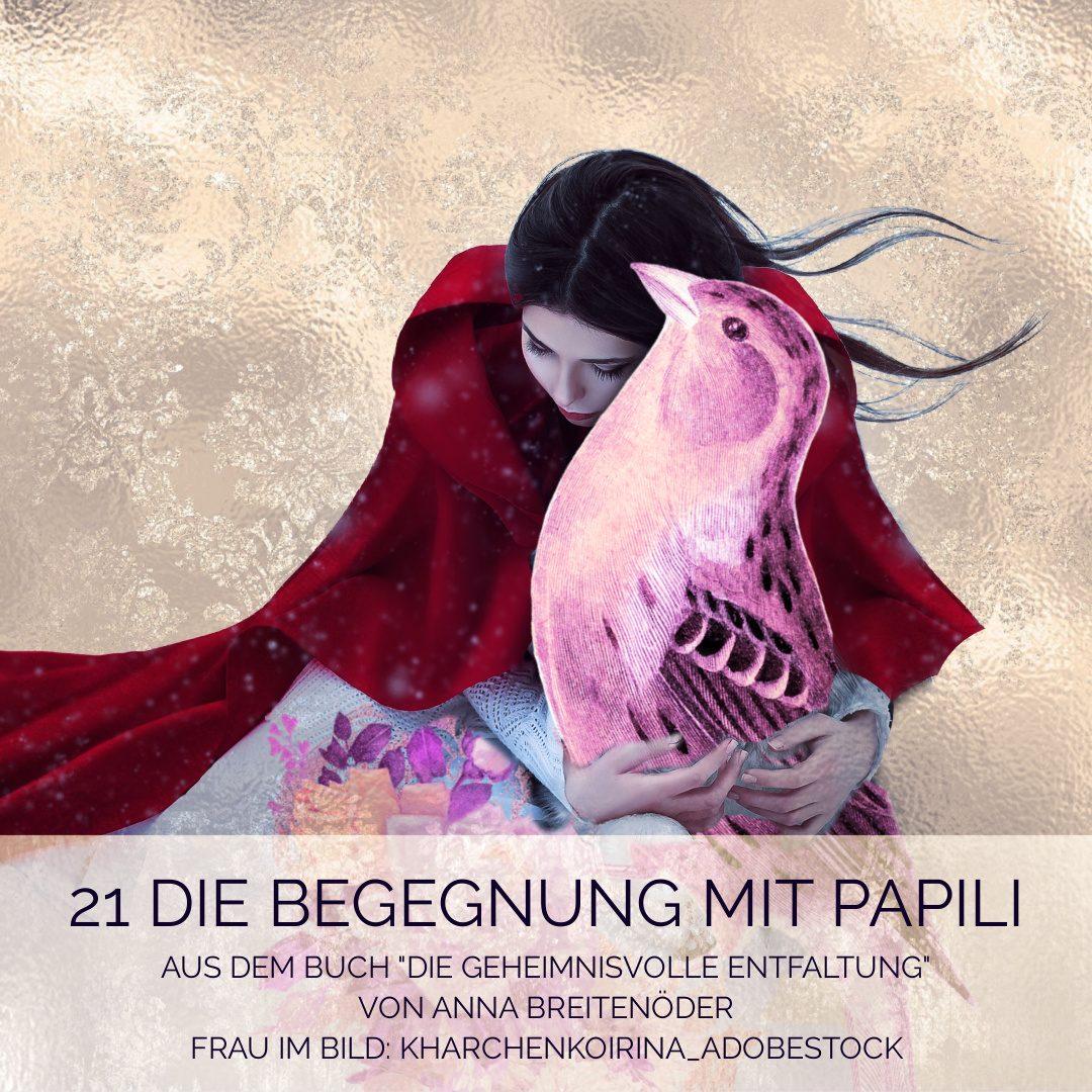 21 Die Begegnung mit Papili